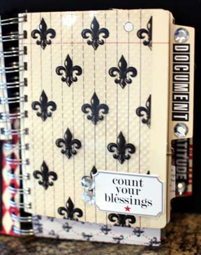 DOCUMENTED file folders and fleur de lis