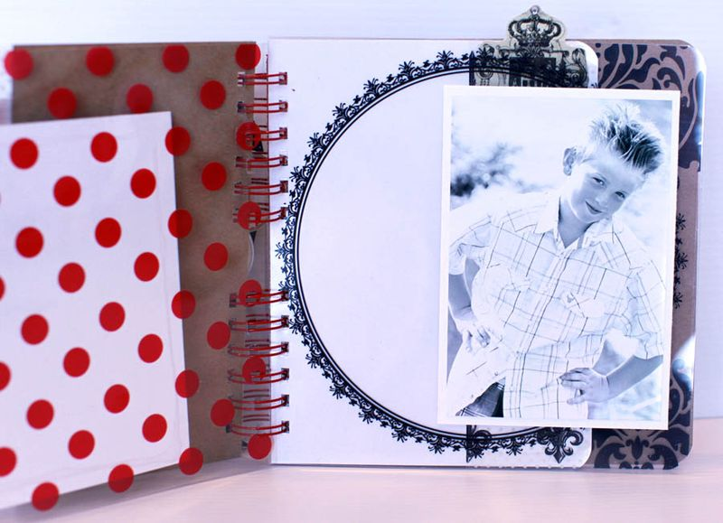 8x8 transparency book view 3