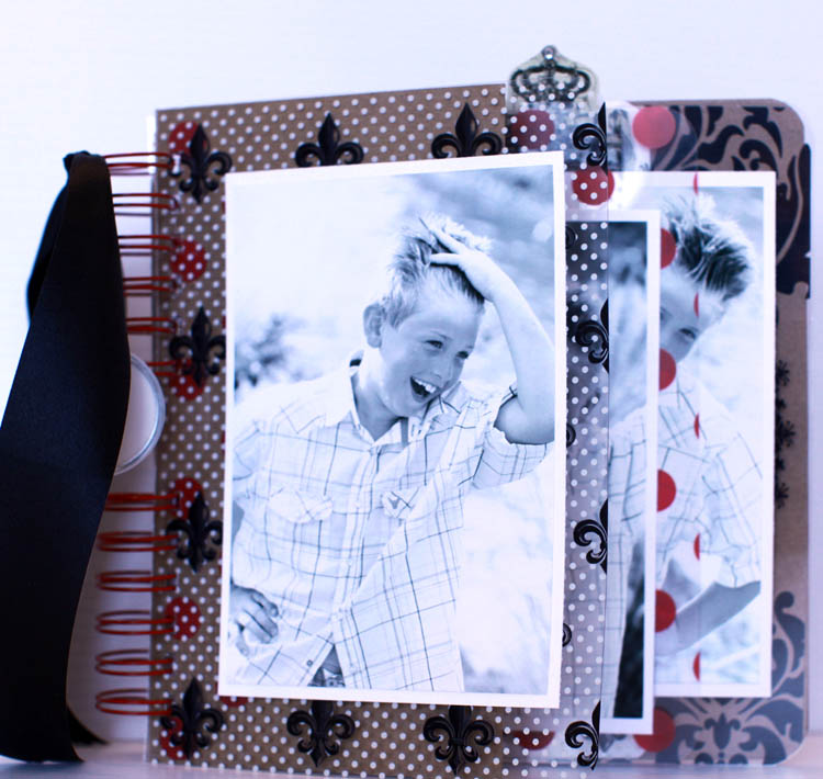 8x8 Transparency book