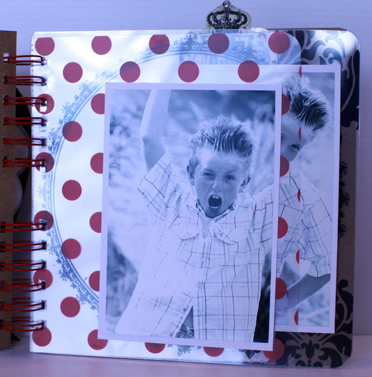 8x8 transparency book view 2