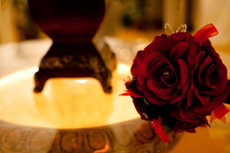 Utah Wedding Photography-150 (1)