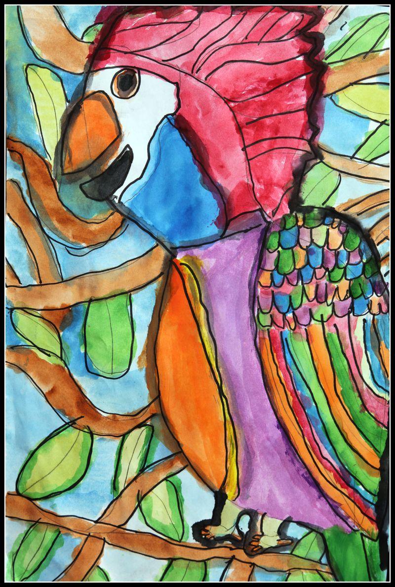 Zach's parrot
