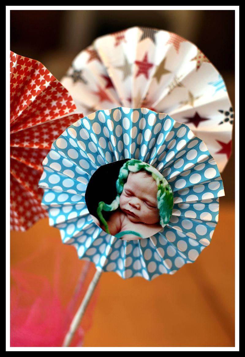 Teresa Collins Pinwheels 4