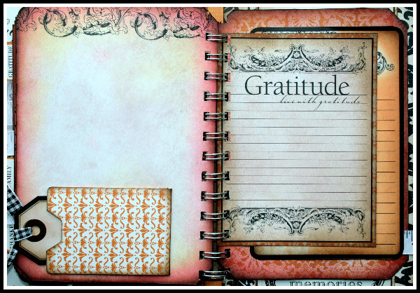Gratitude journal 11