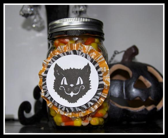 Candycorncat1