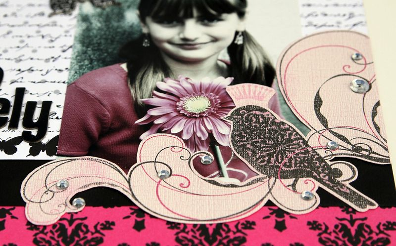 Posh-Core-julie-solovelylayout-detail1.jpg