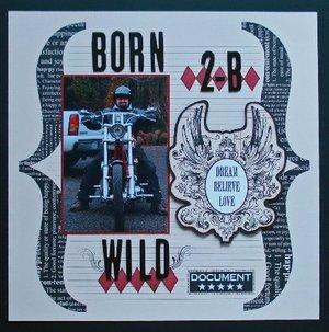 Born_2b_wild_debbie_danielson