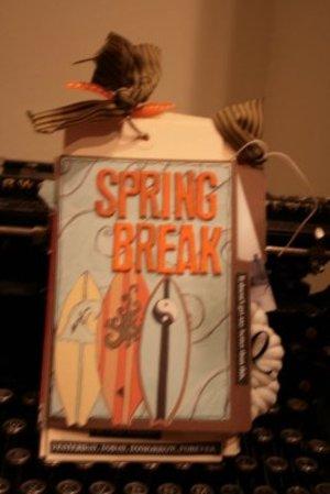 Spring_break_boardwalk_lori_kaye